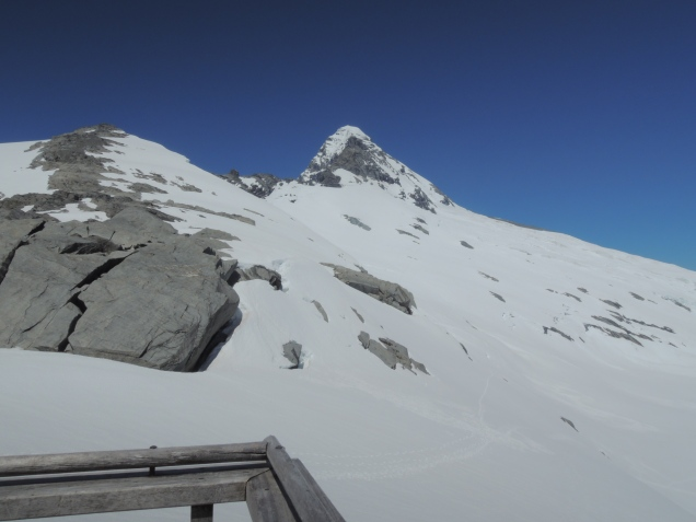 Mt Aspiring - viewed from Colin Todd Hut