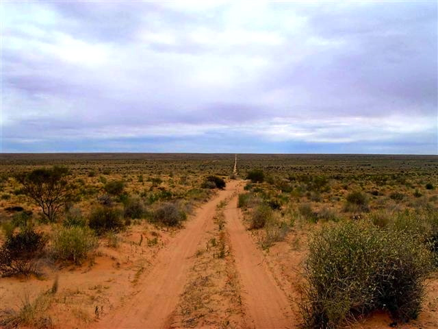 Simpson Desert, disappearing into the horizon