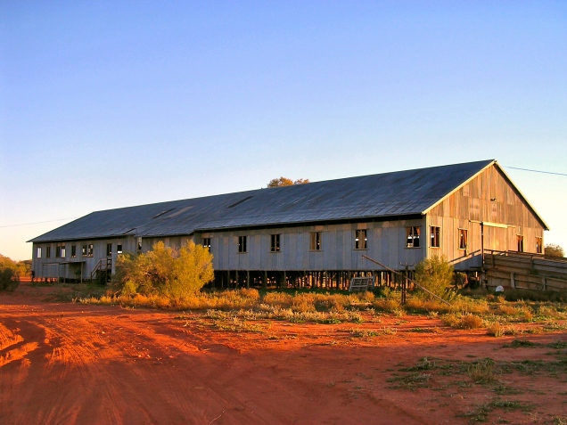The Woolshed - Currawinya, Outback Australia