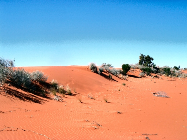 Sand dunes in the Australian Outback