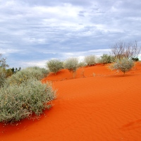 Colours of the Australian Outback (Desert Dunes)