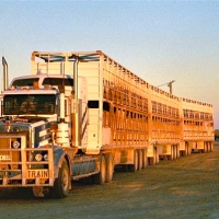 Road-Train (Outback Australia)