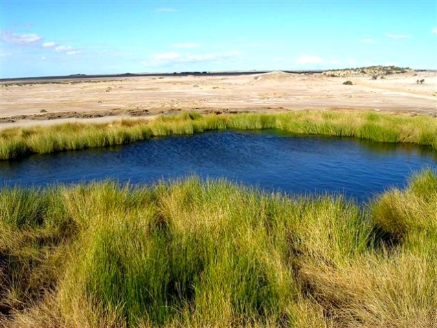 Oasis (In Outback Australia)