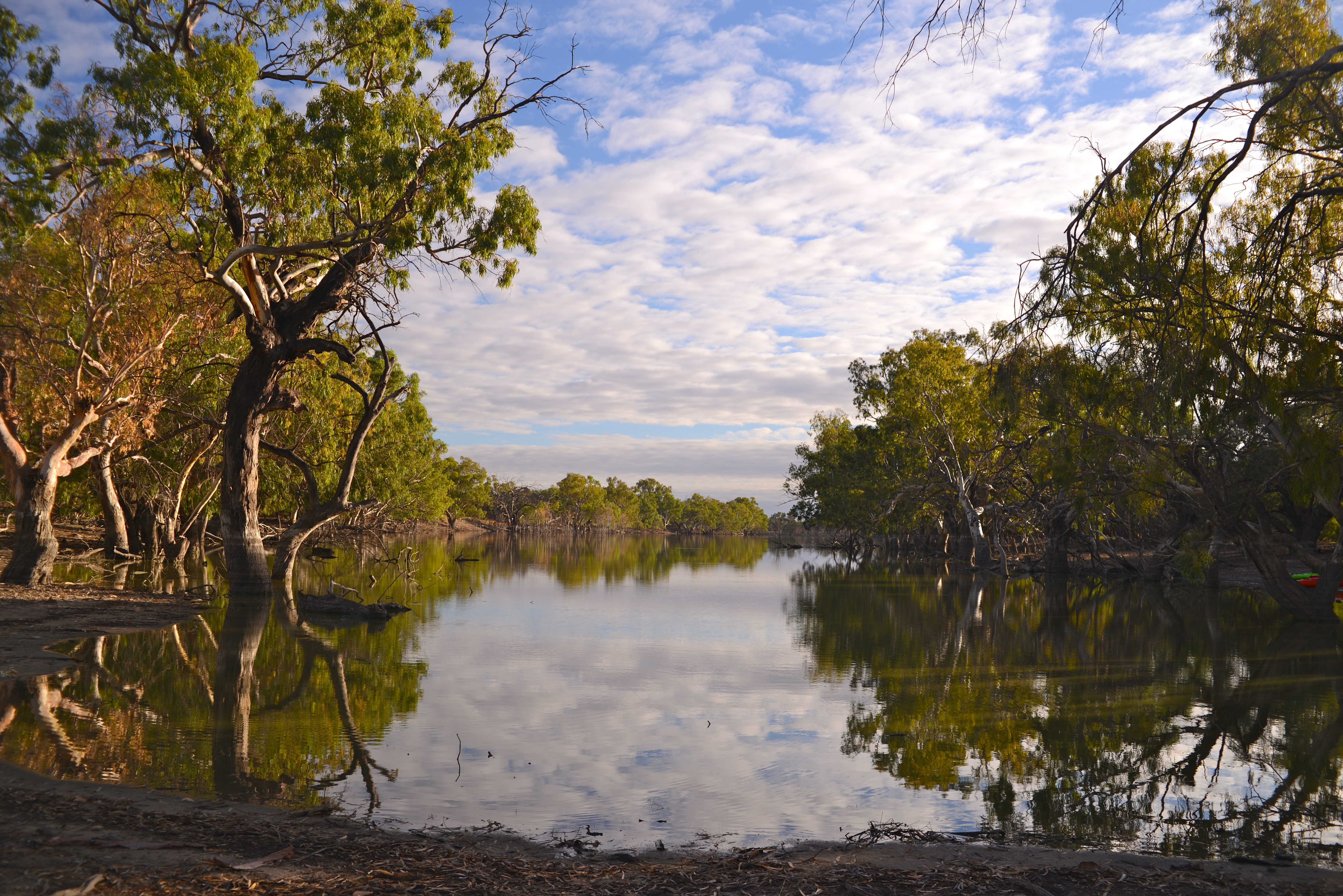 By the Billabong - Trilby Station (Outback Australia)