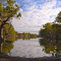 The Billabong (Outback Australia)