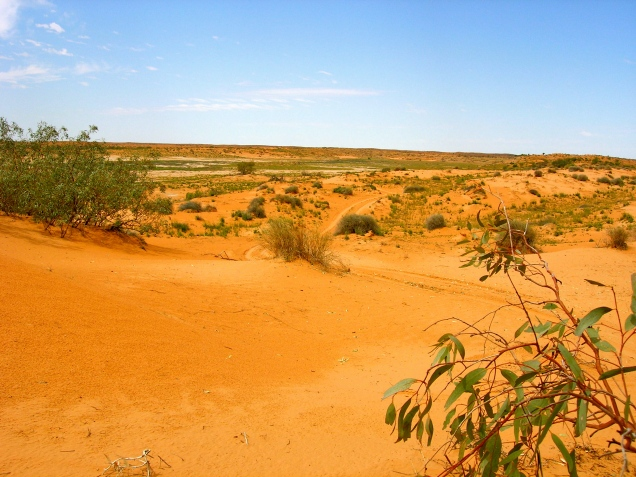 Coongie Lake, Desert Country, Outback Australia