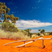 Sand Dune Country (In the Australian Outback)