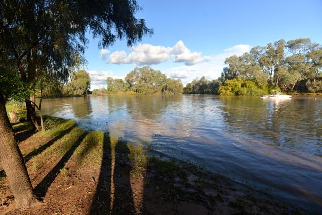 Bogan River, Nyngan
