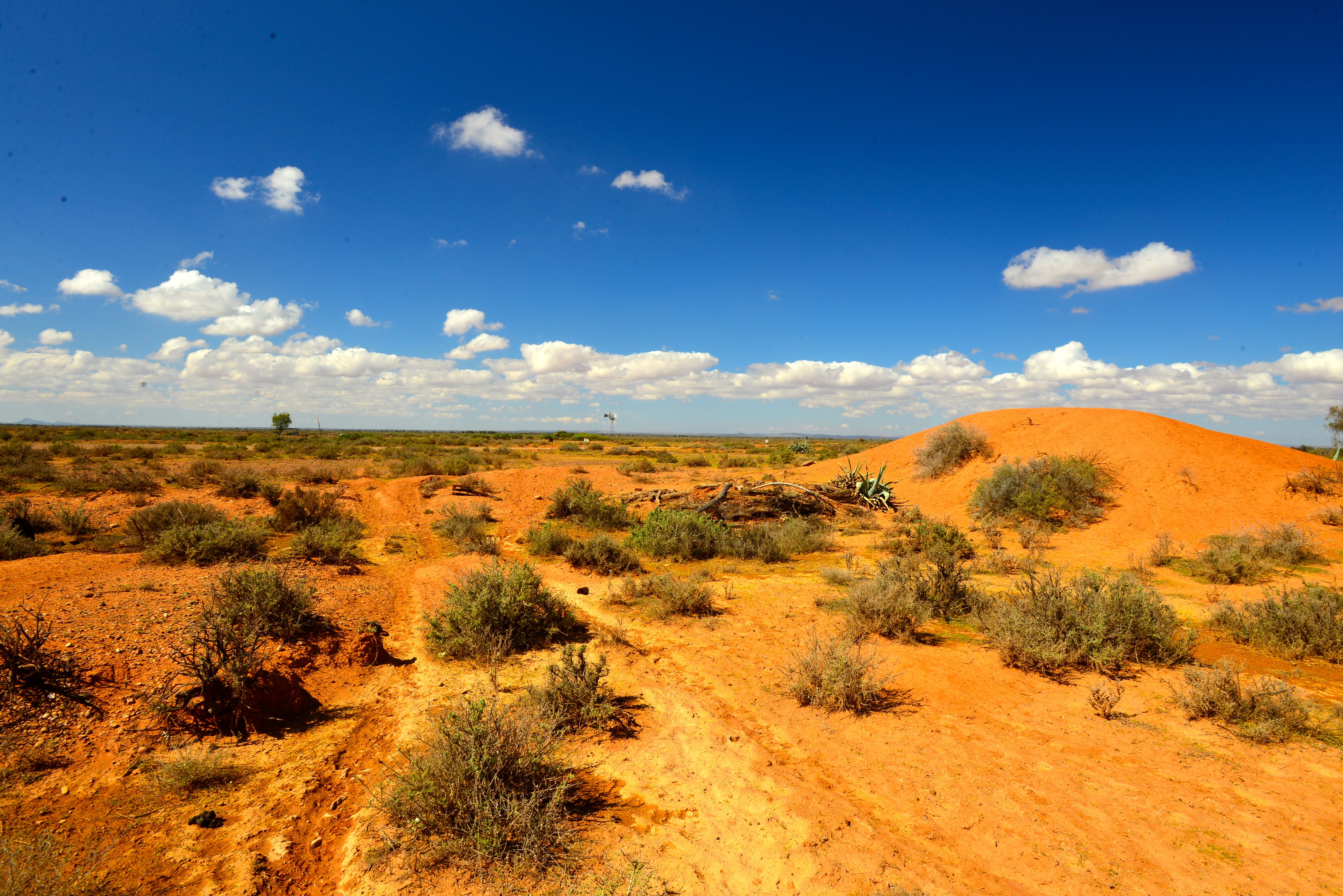 outback - photo #50