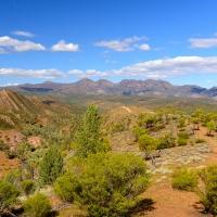 The Flinders Range (Brachina Gorge)