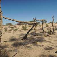 The Birdsville Track (Outback Australia)