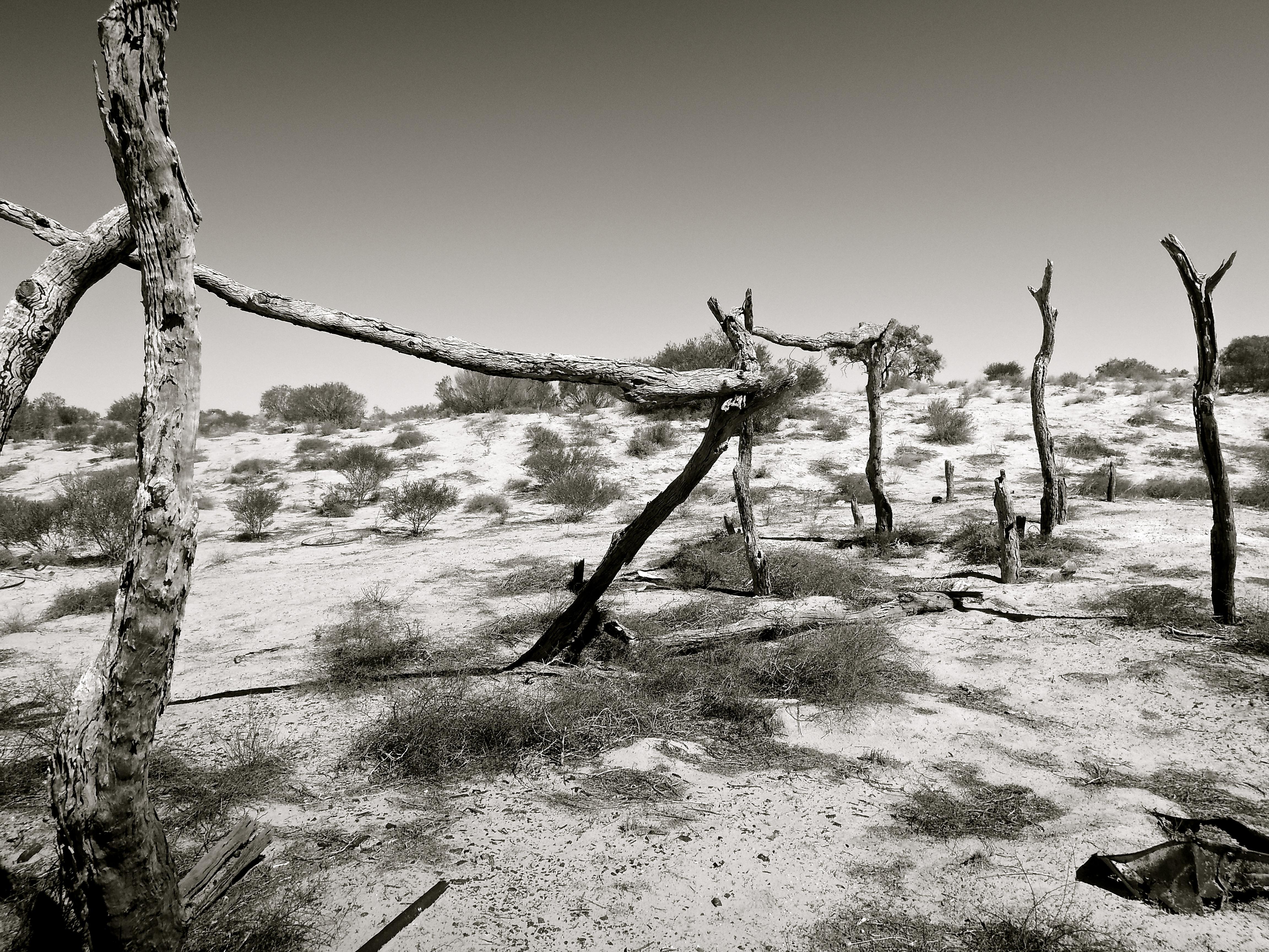 Remote (In Outback Australia)