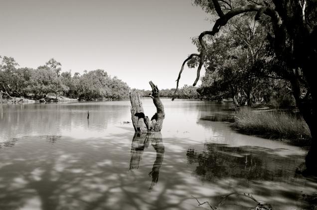 Outback Australia (Paroo River)