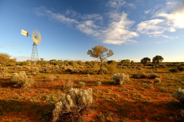 Windmills in the Outback