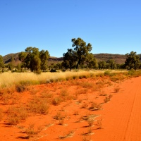 Postcard from the Outback
