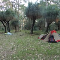 Watagan Mountains (The Australian Bush)