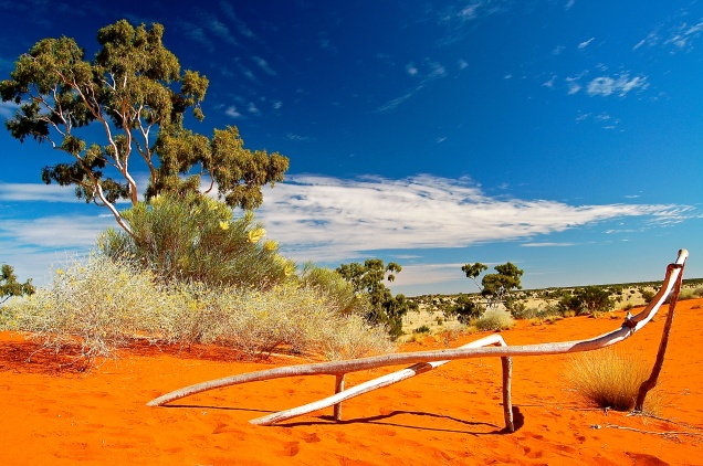 Welford Sand Dune
