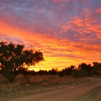 Dawn, in the Australian Outback...