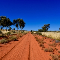 Postcard from the Outback - Sandy Blight Track