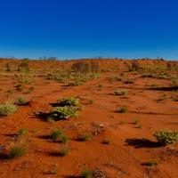 A Desert Home...