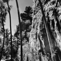An Oasis in the Desert – Boodjamulla National Park