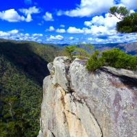 Blue Skies and The Australian Bush...