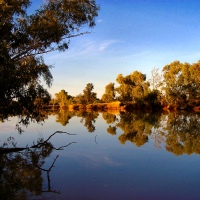 Reflections - By the Billabong...