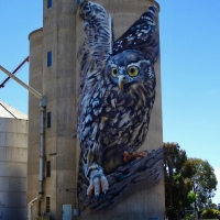 Silo Art, pollinating our countryside…