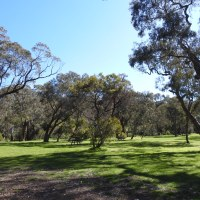 A Birthing Suite, in the Australian Bush…