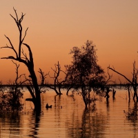 Sunset, in the Australian Outback…