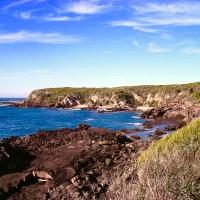 The Sapphire Coast, nature's paradise…